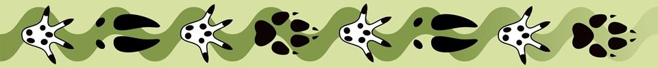 Somerset Mammal Group